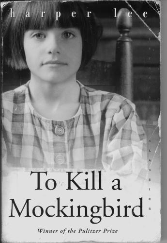 To KIll a Mockingbird - book cover