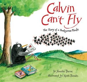 Calvin Can't Fly book cover image