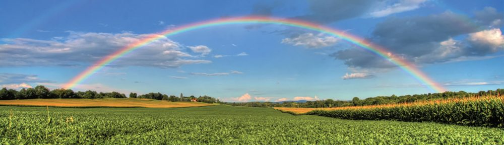 A photo of a large green field, with a rainbow in the sky.
